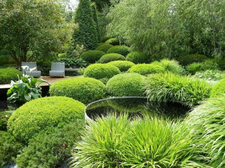 diseño de paisaje con muchas plantas y setos Jardín Pinterest