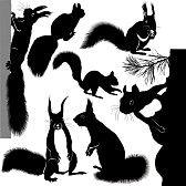 arbres silhouette : animaux écureuil arbre arbre de Noël
