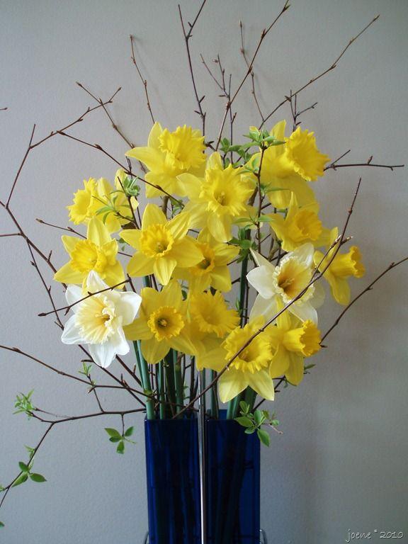 Daffodil Bouquet Daffodil Yellow Wedding Flowers