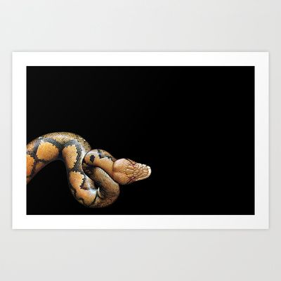 serpente Art Print by Francesco Mestria -