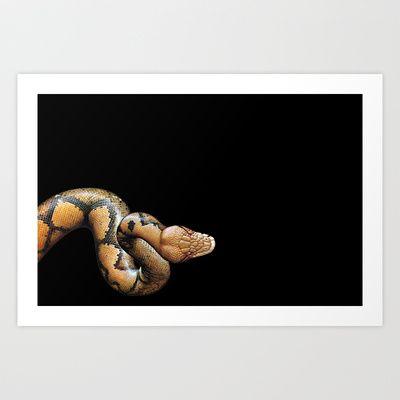 serpente Art Print by Francesco Mestria -