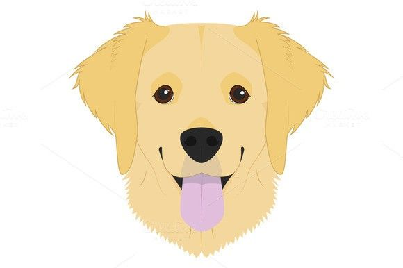 Golden Retriever Vector Illustration Golden Retriever Cartoon