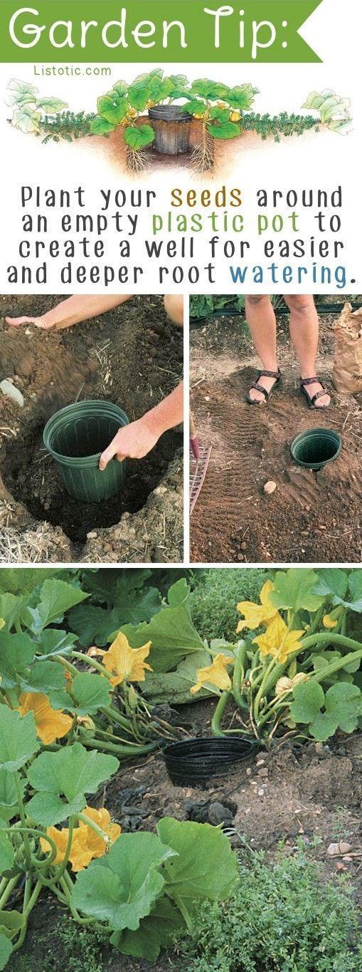 DIY Gartenidee für Gemüsepflanzen oder Blumen. Einfache DIY Gartentipps und