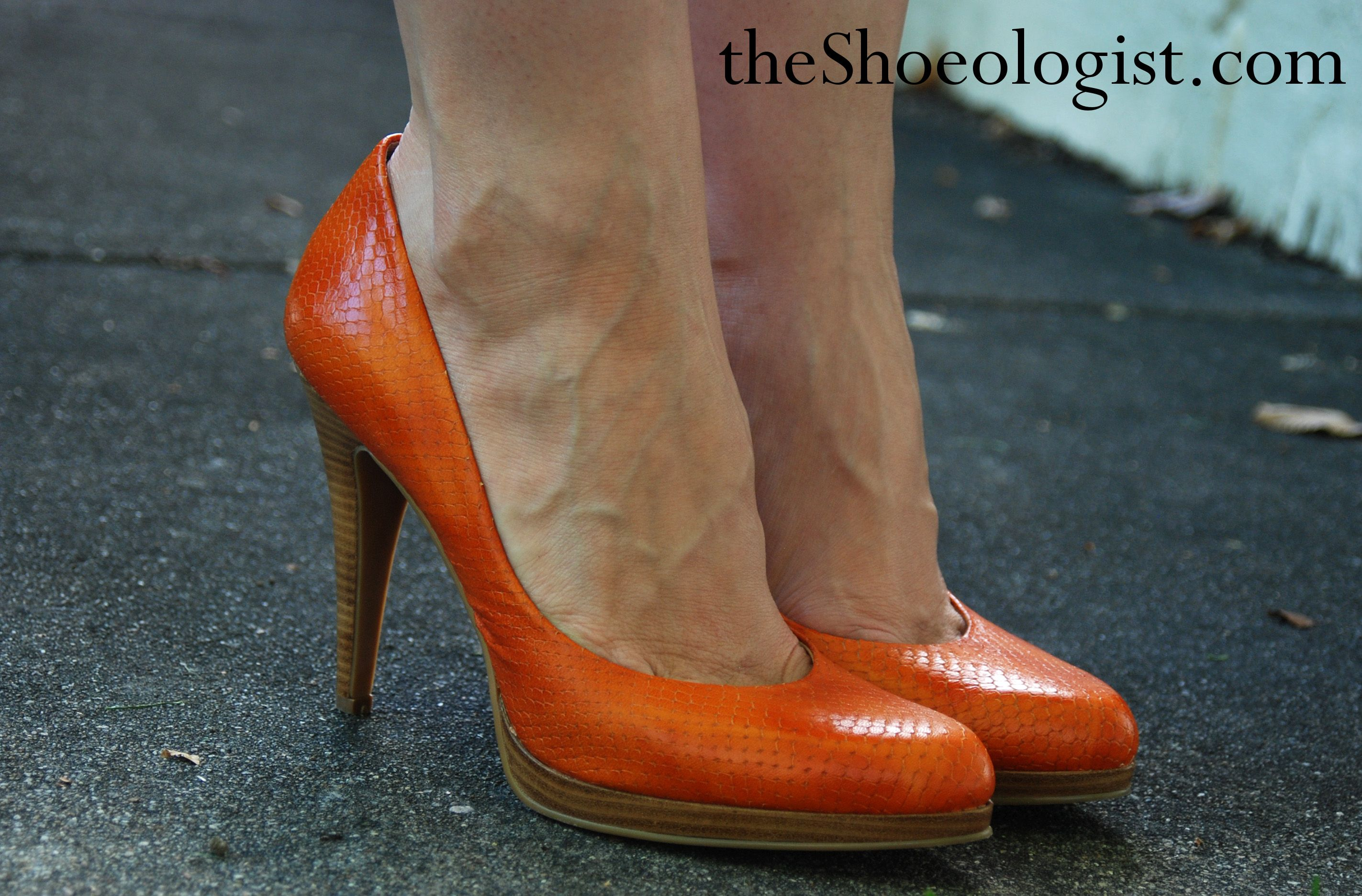 "f22a1dd00a2 Nine West ""Rocha"" pumps in orange reptile-stamped leather"