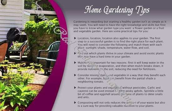 Superior Gardening And Tips Pictures