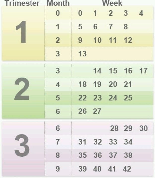 Pregnancy timing chart -- very useful for keeping track of pregnancy