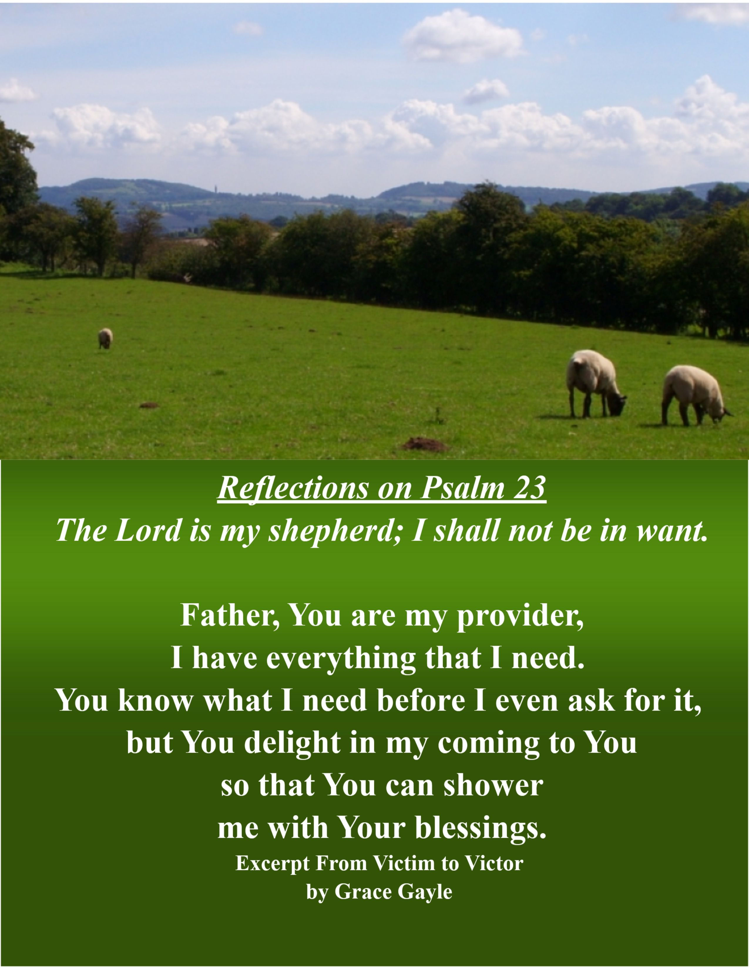Reflections from the 23rd Psalm  Follow the series