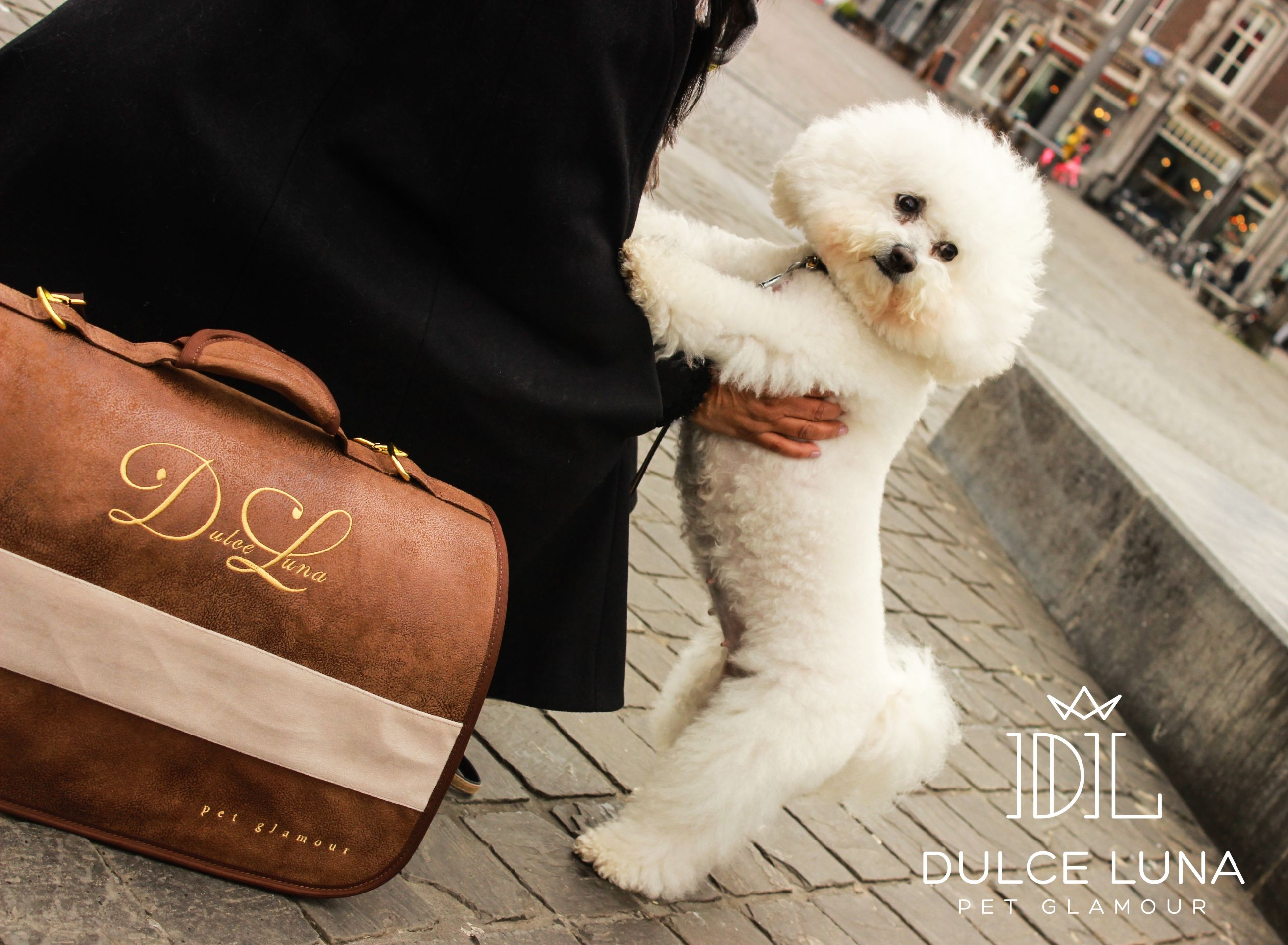 City trip! Travelling 1st class, comfortable and safe, with pet carrier Elegance. Soon available in our webshop, stay tuned. Have a great Sunday! 🐶❤