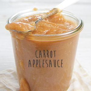 Carrot applesaucethe mother of all baby food recipe websites i carrot applesaucethe mother of all baby food recipe websites i cant wait to try some of these gourmet baby puree recipes i want to taste some forumfinder Image collections