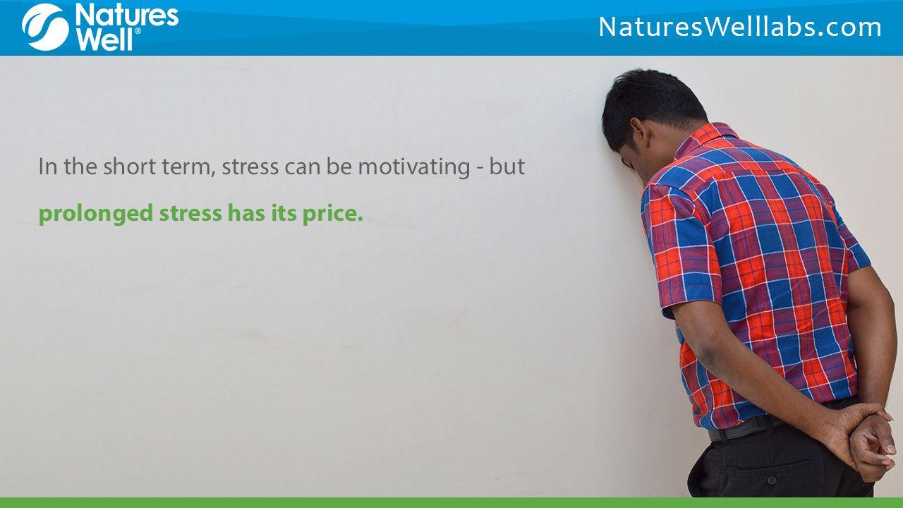 stress blodtryk