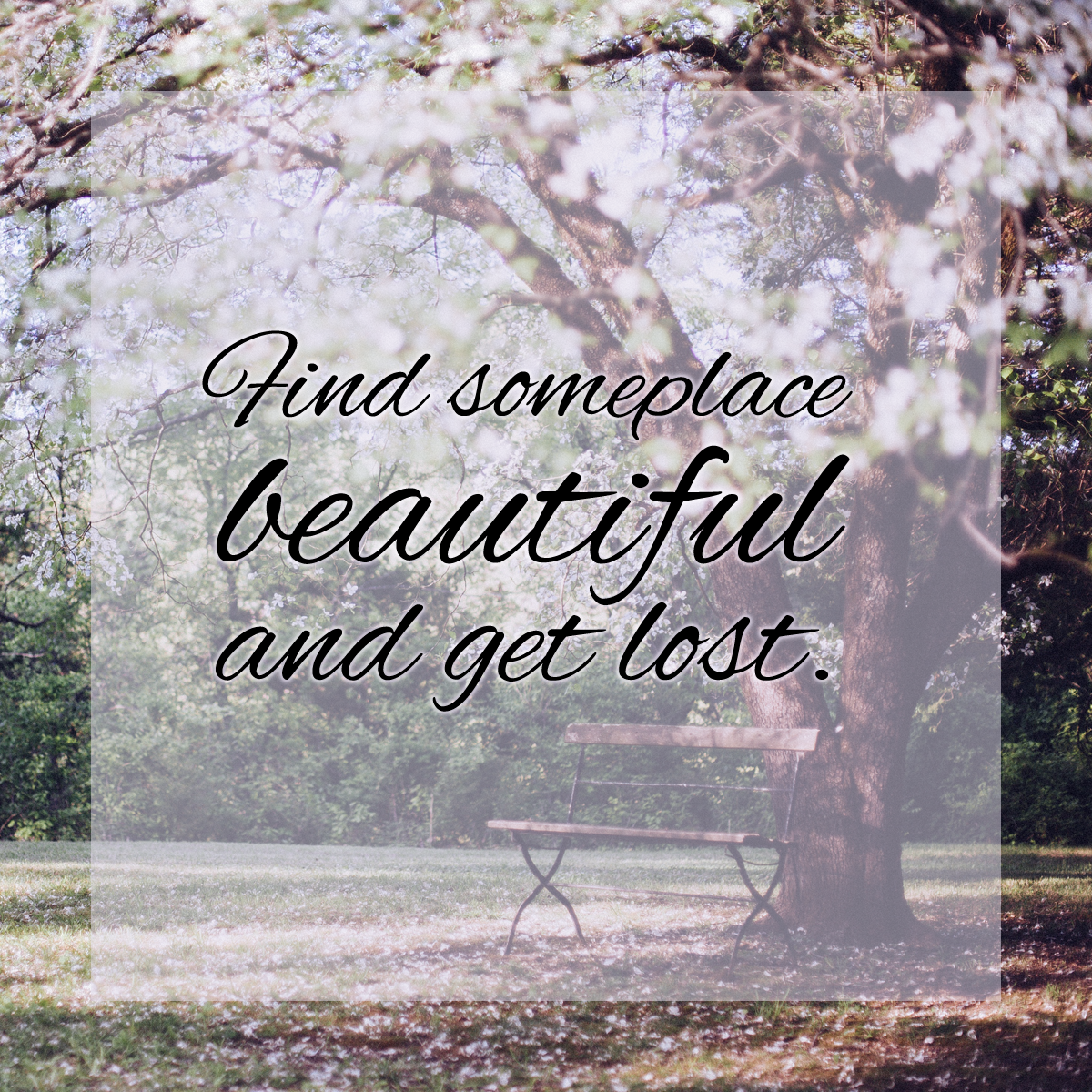 There is beauty all around us. #quote #wordstoliveby #