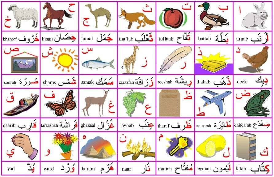 Arabic Alphabet Poster Letters Words And Images