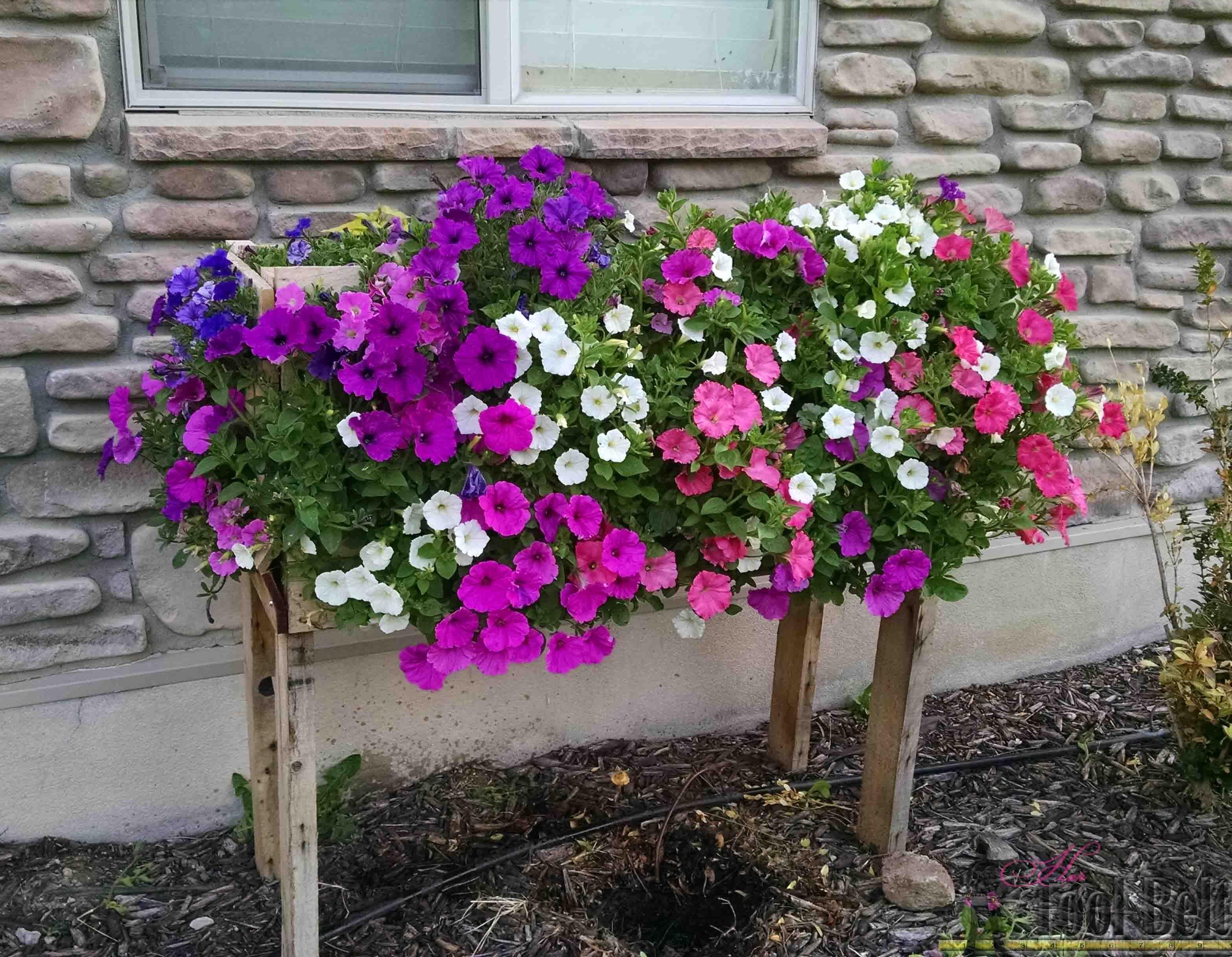 Pallet Planter Box For Cascading Flowers Garden Boxes Diy