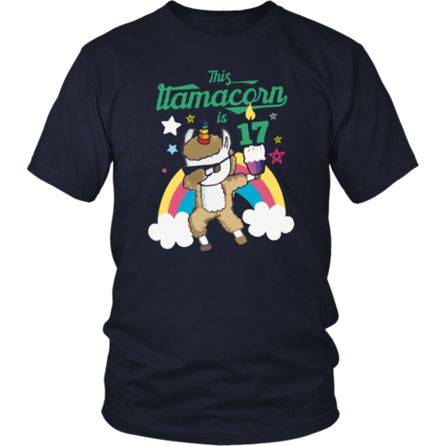 Dabbing Llamacorn Alpaca Llama Unicorn 17Th Birthday T-Shirt — teepaly.com