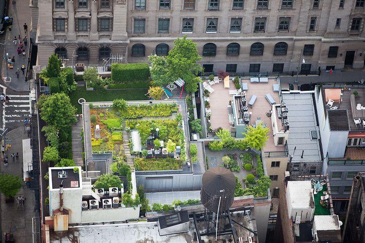 Exploring New Yorku0027s Most Hidden Spaces: Its Rooftops   176 Grand Street    Photographer Alex