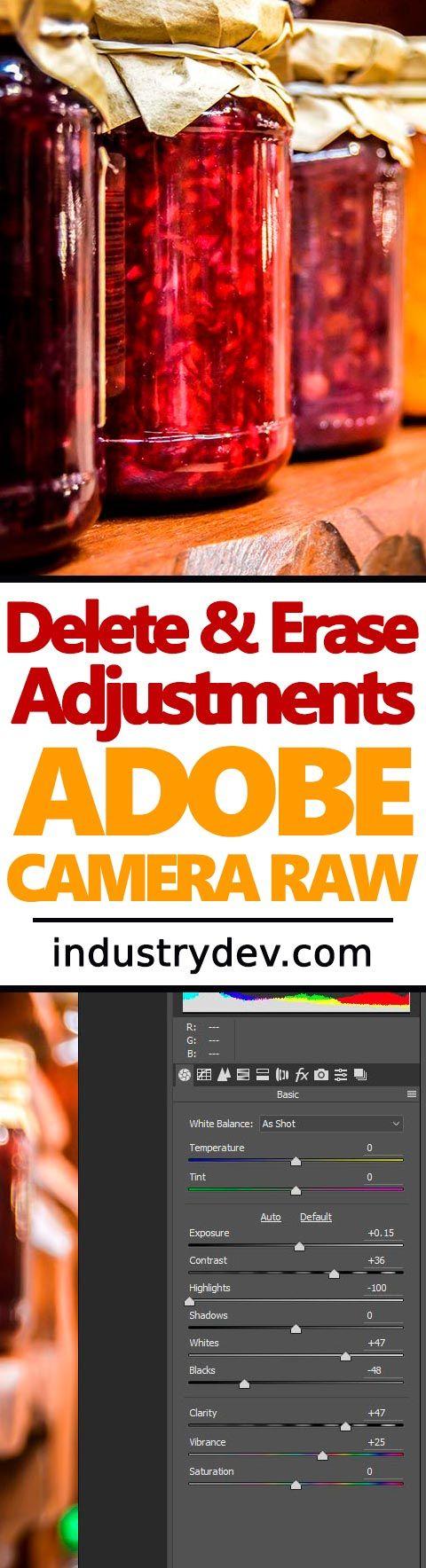 Real World Camera Raw: The Adjustment Brush > The