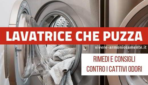 Lavatrice che Puzza: Rimedi per Eliminare i Cattivi Odori ...