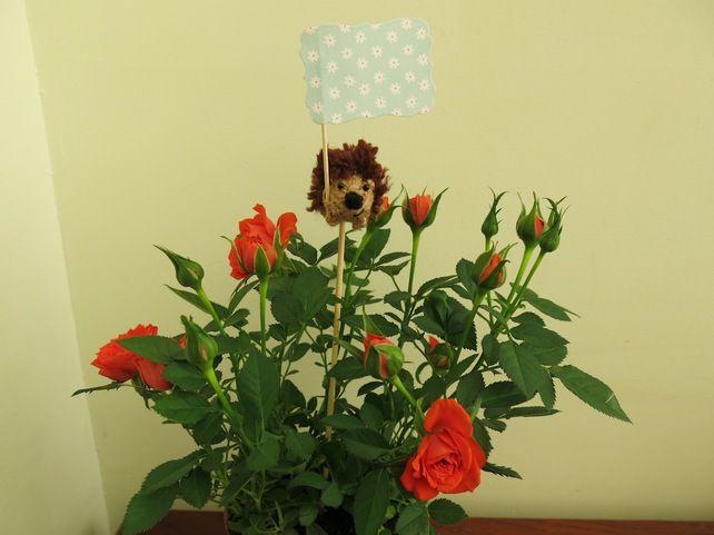 Hedgehog plant gift tag £4.00