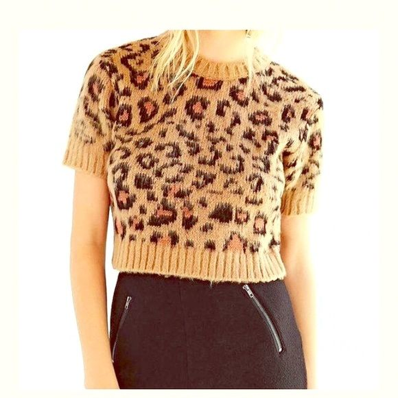 Urban Outfitters Fuzzy Leopard Cropped Sweater Top Brand new, super good quality, fuzzy and cozy. From urban outfitters. Could fit sizes small-large. Originally $69. Urban Outfitters Sweaters Crew & Scoop Necks