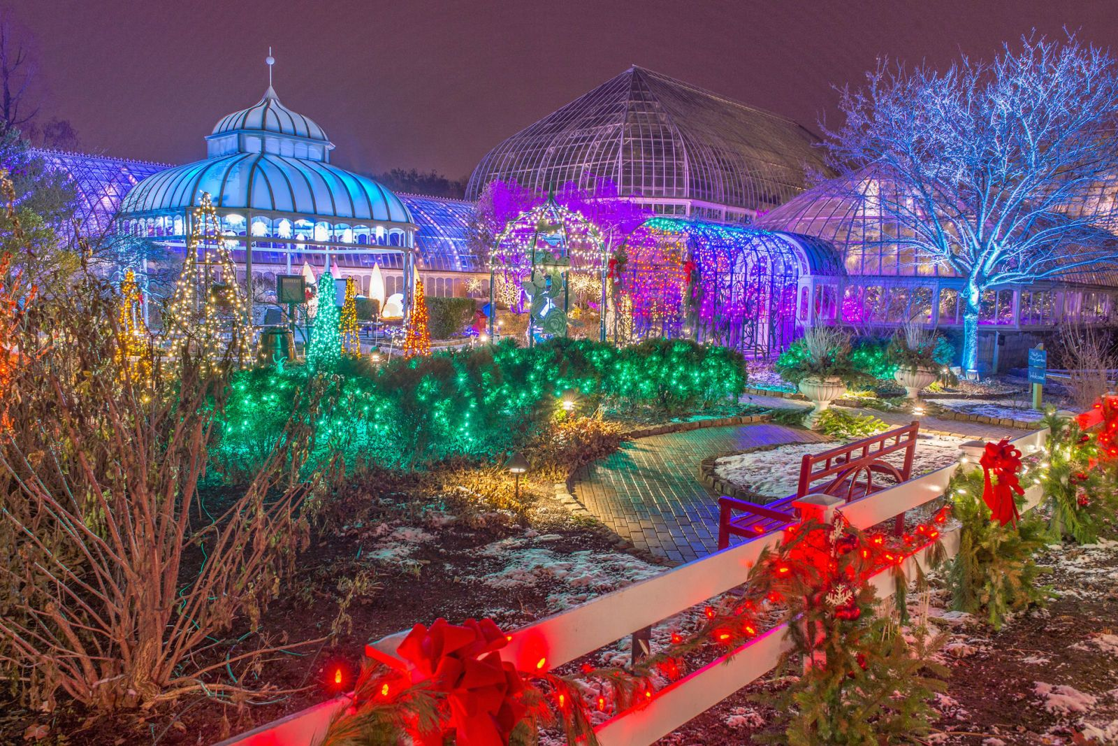 9 Botanical Gardens That Are More Beautiful at Night (With