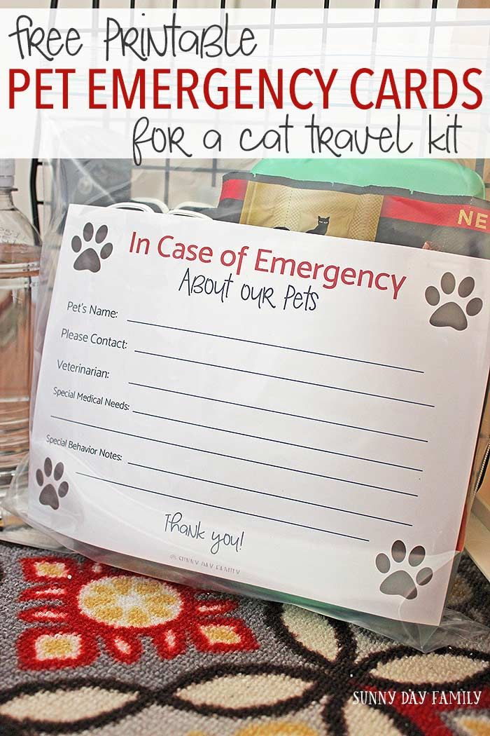 Free Printable Pet Emergency Card For A Cat Travel Kit Pet Emergency Card Pet Emergency Pet Emergency Kit