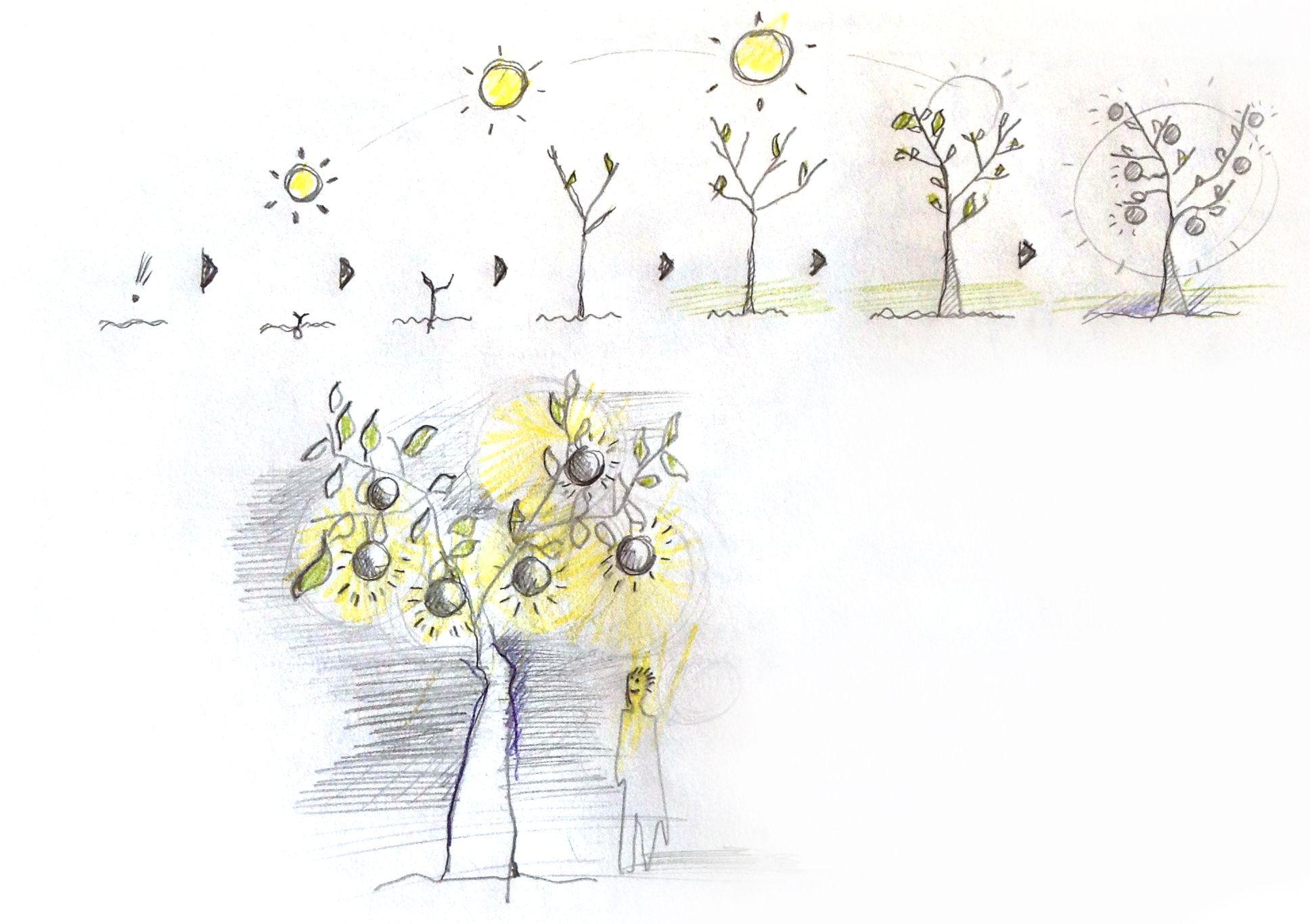 Dibujo Para Nuevo Proyecto Dibujos Proyectos Nuevos Proyectos