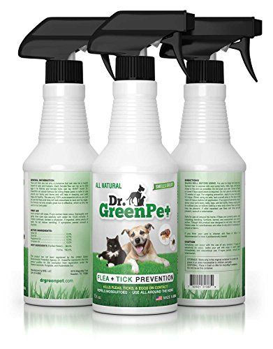 Dr Greenpet All Natural Flea And Tick Prevention And Control Spray For Dogs And Cats 16oz Smells Great C Flea Spray For Dogs Tick Prevention Flea And Tick