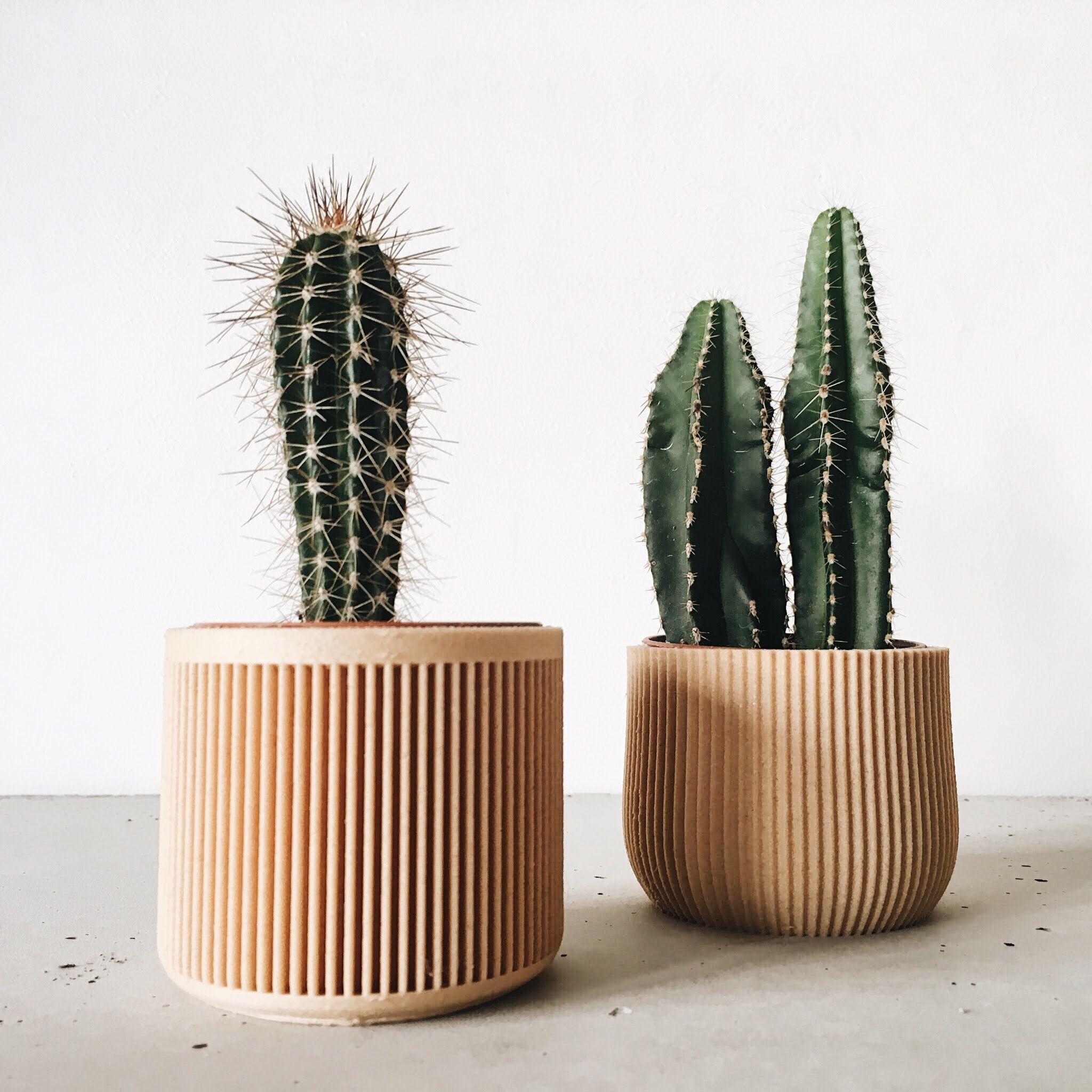 Geometric Pot / Planter Printed In WOOD Minimalist And