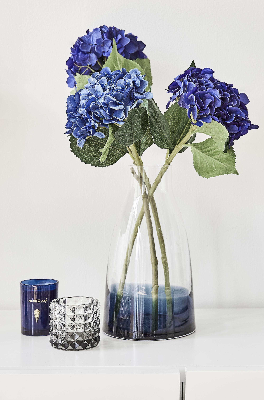 Perfect Match Blaue Hortensien In Einer Glasvase Mit Sanftem Navy