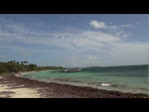 Anse aux Bois, sur la cote Sud Atlantique de la Martinique est très prisée des kitesurfeurs #martinique #kite