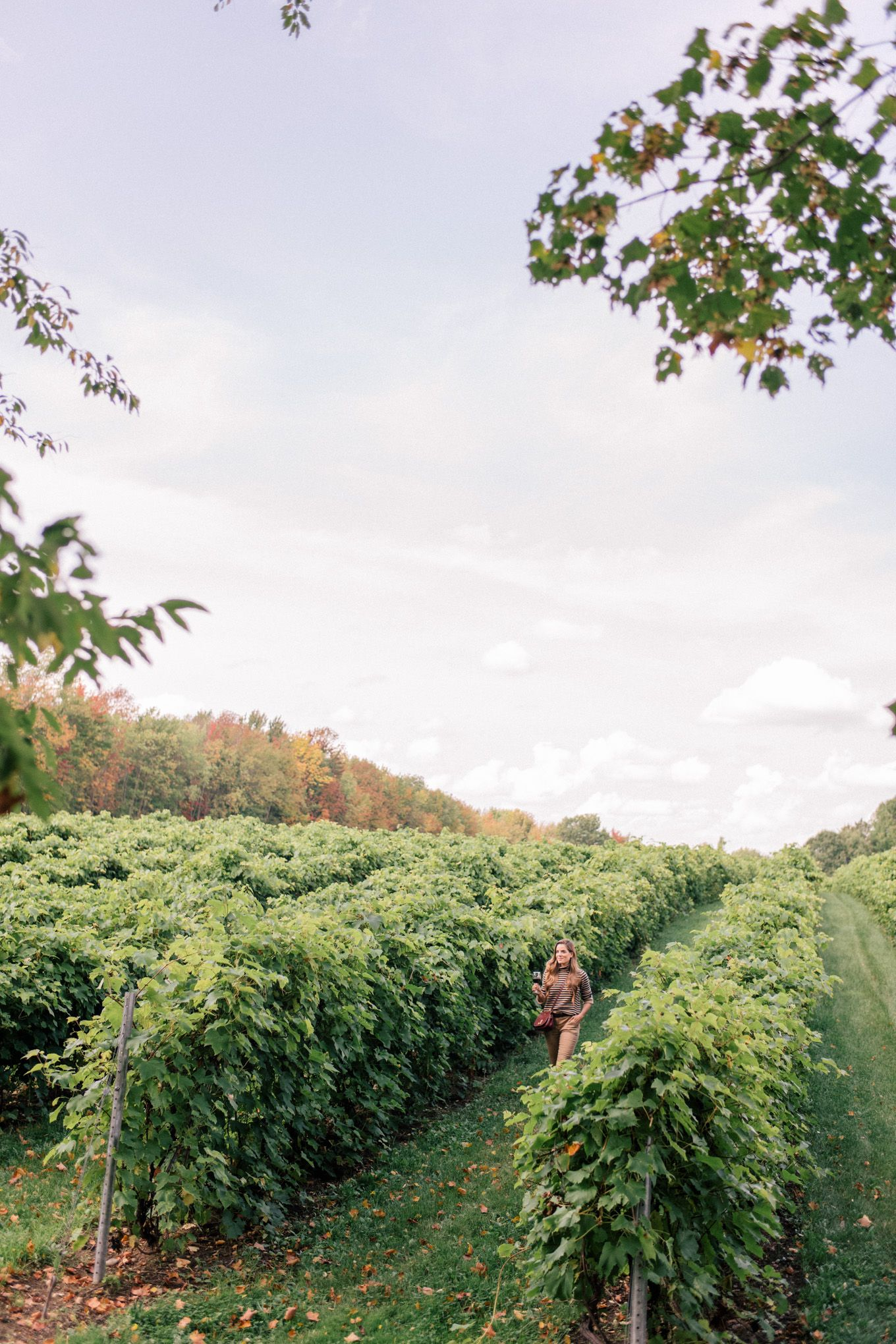 Gal Meets Glam Visiting Eastern Townships Apple Orchard Winery - 7 things to see and do in quebecs eastern townships