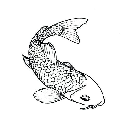 30 Desenhos De Peixe Para Imprimir E Colorir Peixe Desenho
