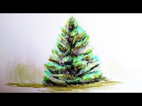 How To Paint Realistic Tree With Watercolor Pencils Step By Step