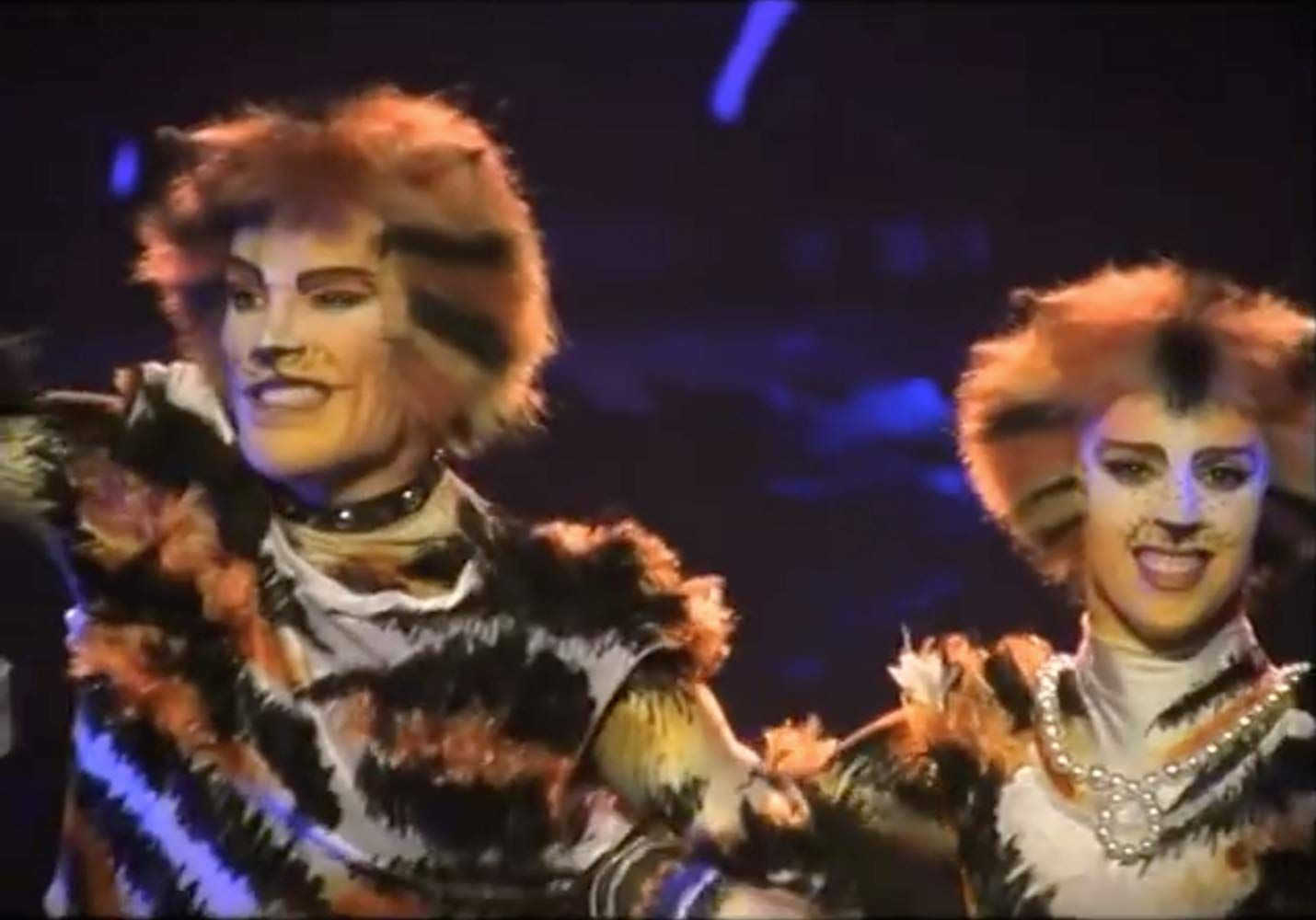 Cats (1998) in 2020 Cat movie, Jellicle cats, Cats musical