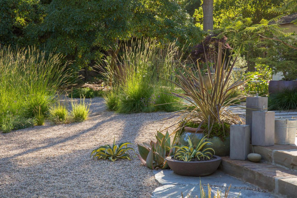 native grasses paired with pea