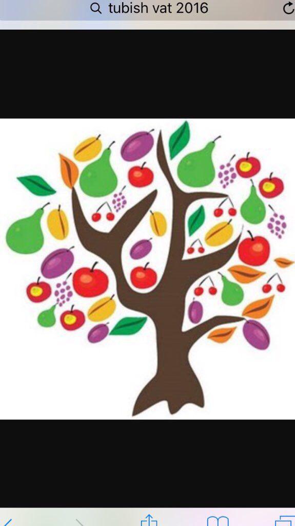 Feliz año nuevo de los árboles (una fiesta judia menor, hoy ...