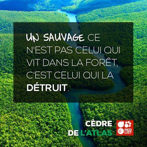 Respect De Notre Planète Nature Et Bienveillance
