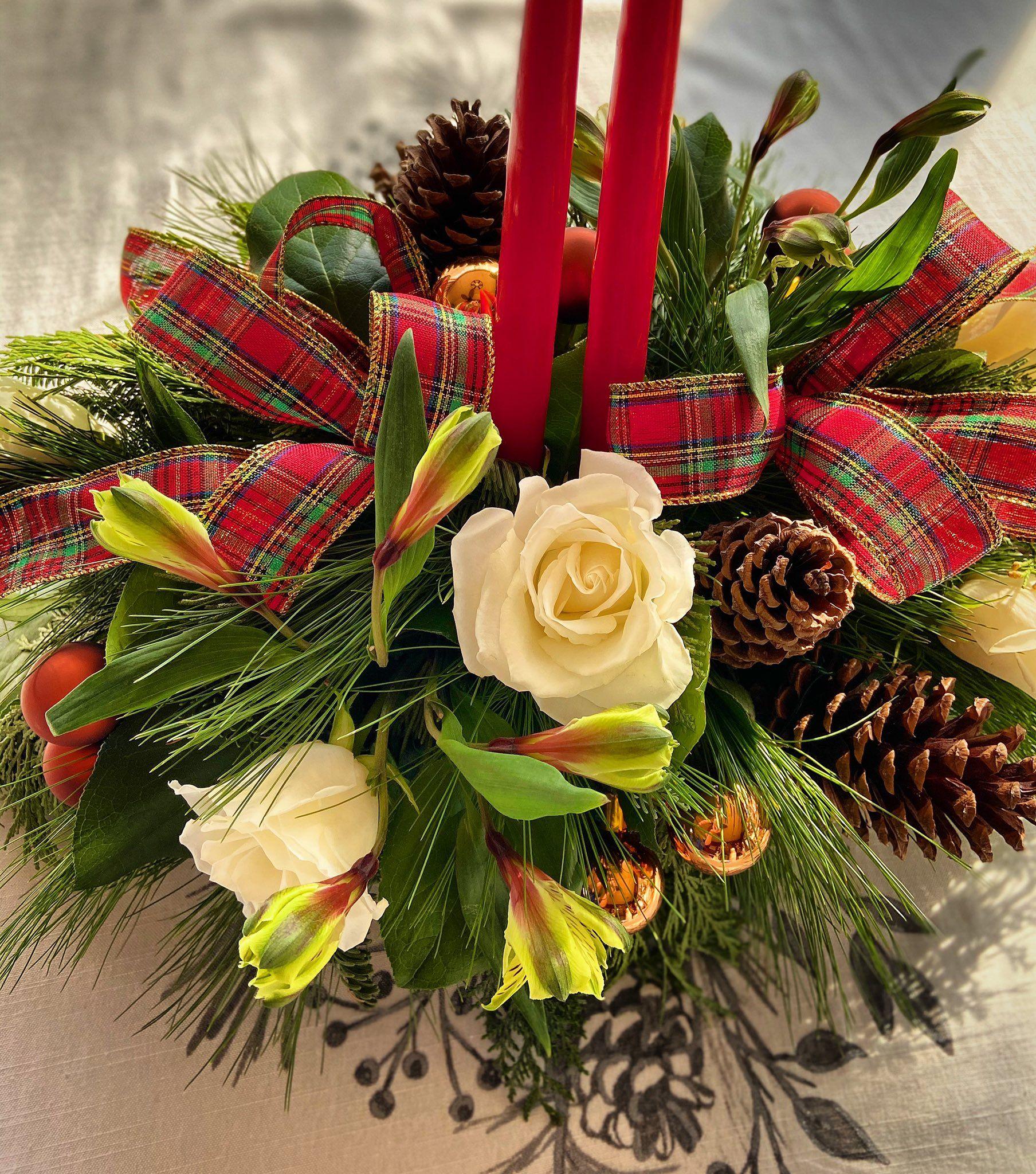 Holiday Flower Holiday flower, Flowers today, Flower