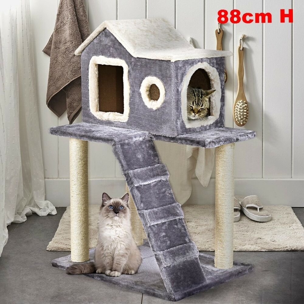 Stunning Cat Tree Medium Pet Scratching Post House Condo Cozy Tower Furniture Hq Petsupplies Pets Petshop Cat Tree Cat Tree Scratching Post Cool Cat Trees