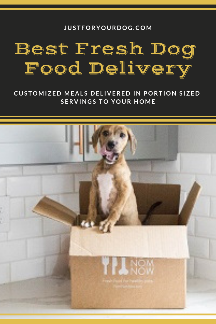 Best Fresh Dog Food Delivery ServiceMade With Human Grade