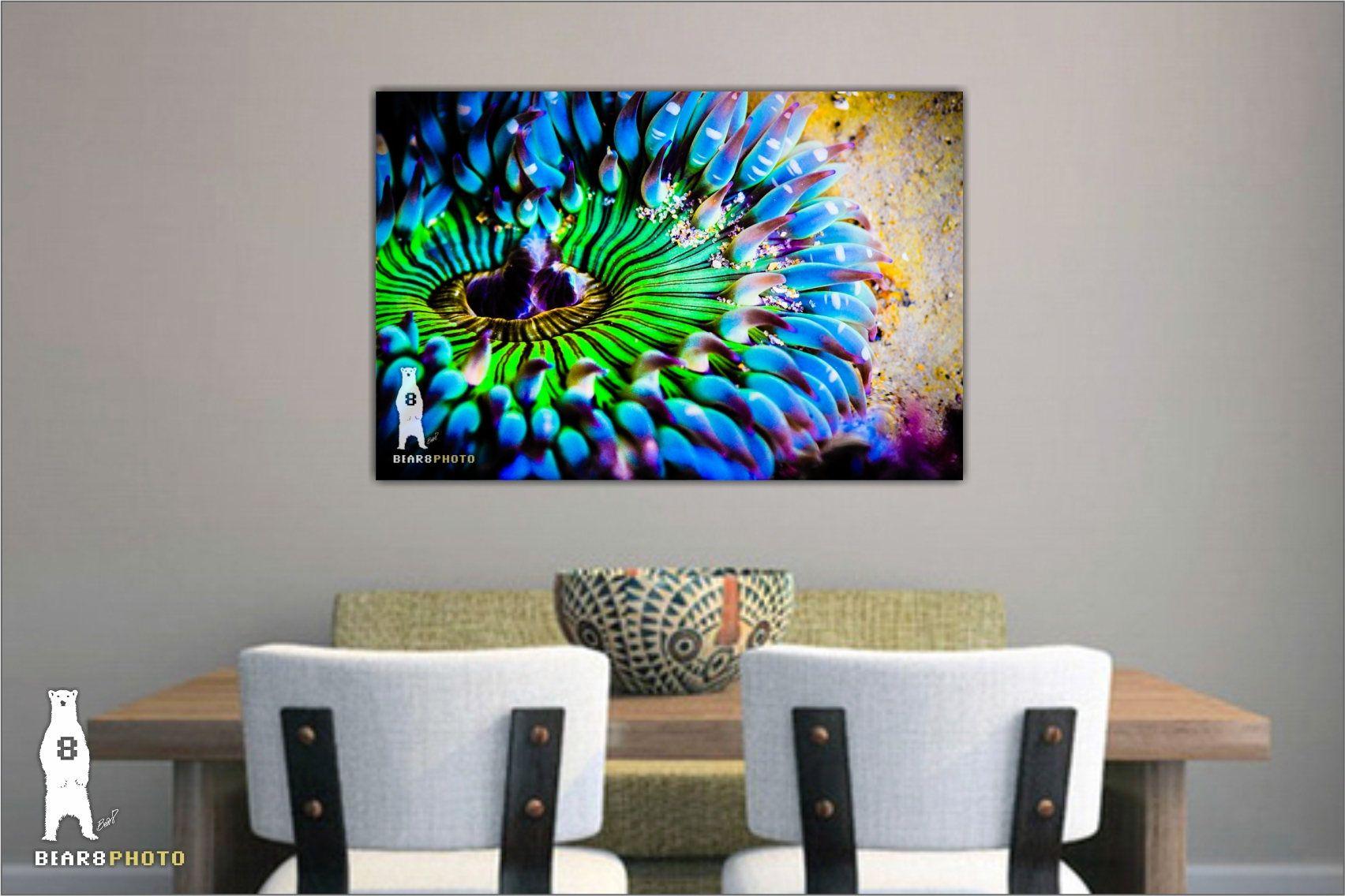 Colorful Wall Art Bright Wall Art Sea Life Prints Bold And Etsy Sea Life Wall Art Colorful Wall Art Colorful Art Prints
