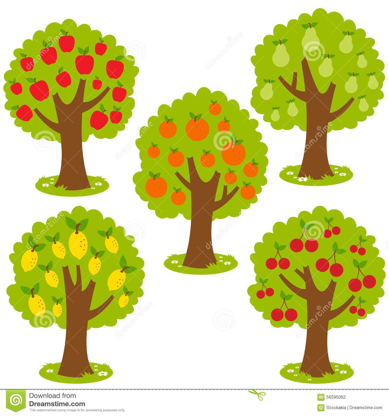 Red apples with seeds and tree growing diagram - Download Free Vectors,  Clipart Graphics & Vector Art