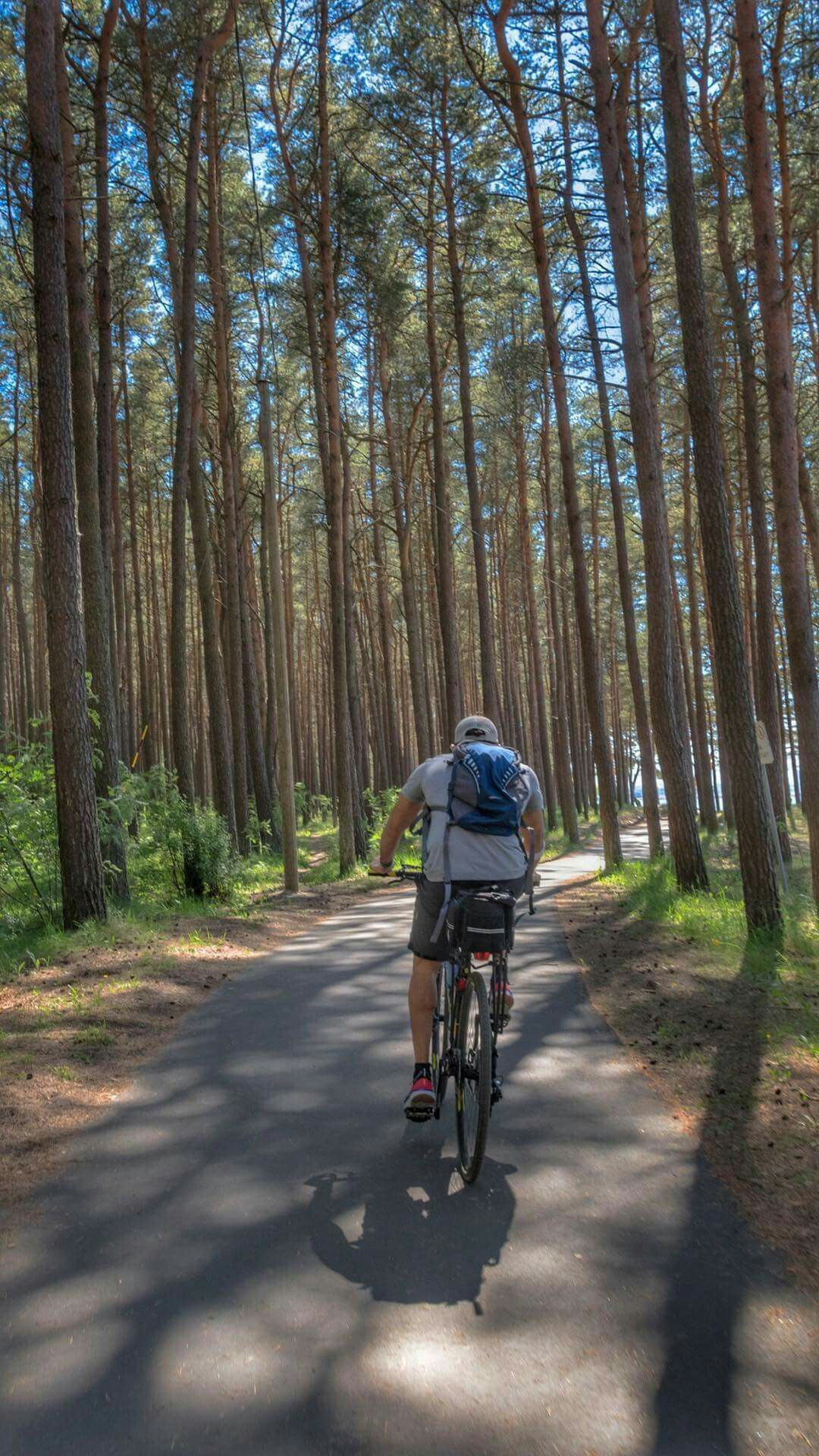 Life Is Like Riding A Bicycle To Stay Balanced You Must Keep Moving الحياة مثل ركوب الدراجة لكي تحافظ على توازنك لابد منك أن تستمر في ا Faz3 Esportes