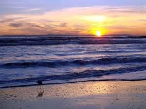 Image detail for -... beach just in time to capture this beautiful sunset. Huntington Beach