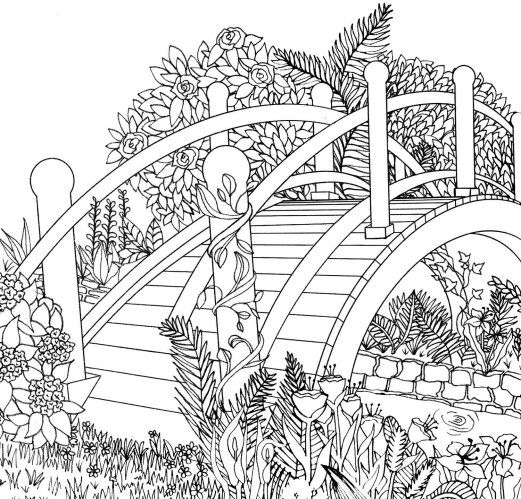 Adult Coloring Book Great British Flower Show