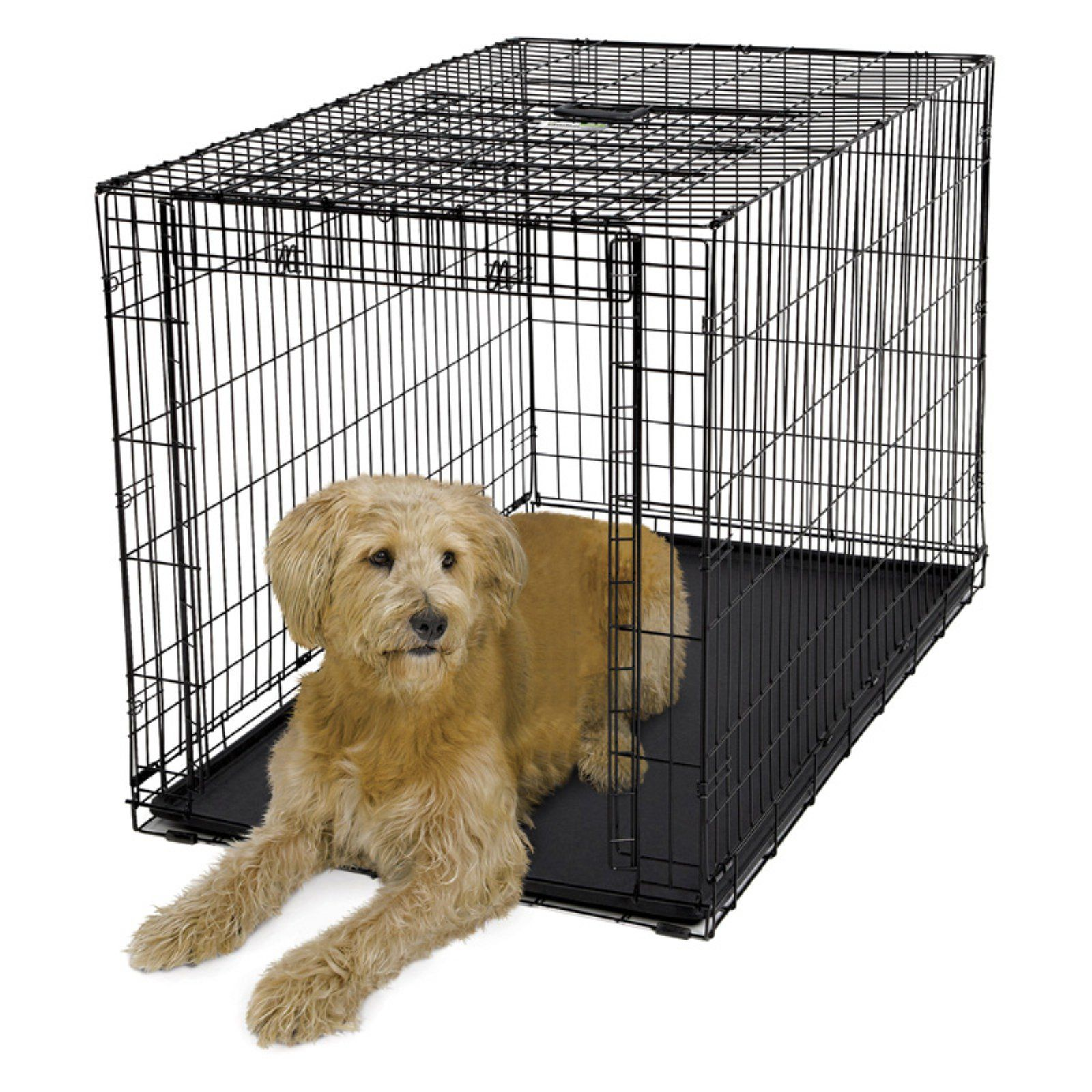 Midwest Homes For Pets Ovation Single Door Metal Dog Crate Dog Crate Large Dog Crate Folding Dog Crate
