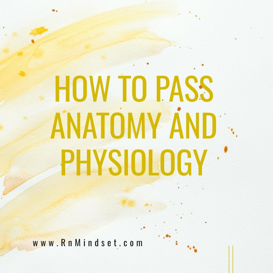 How To Pass Anatomy and Physiology! #nursingstudents