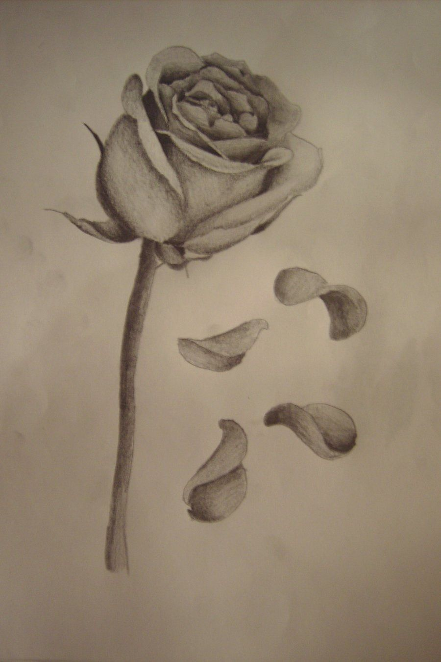 It's just an image of Decisive Rose Petal Drawing