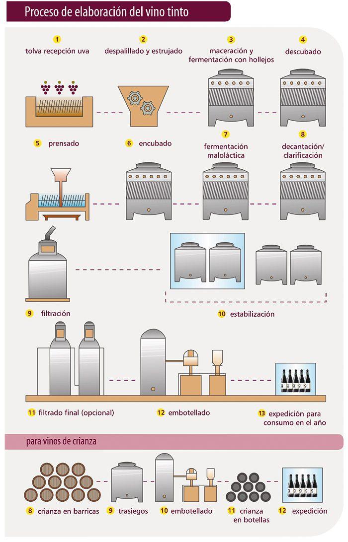 Proceso de elaboraci n del vino tinto sobre el vino for Maquinaria y utensilios para la produccion culinaria