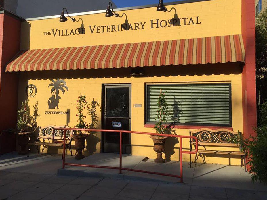 15+ Arizona avenue animal clinic ideas in 2021